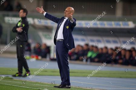 Stock Picture of Chievo Verona's coach Domenico Di Carlo.
