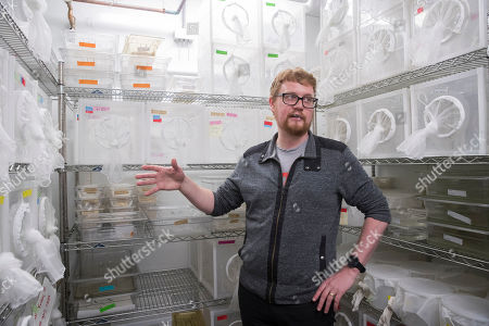 Researcher Ben Matthews speaks in a room housing mosquitos in the Vosshall Laboratory at Rockefeller University in New York. Knowing the DNA sequence lets scientists manipulate it with gene editing techniques, said Matthews, who was part of the international team that published the refined description of the mosquito genome in November 2018
