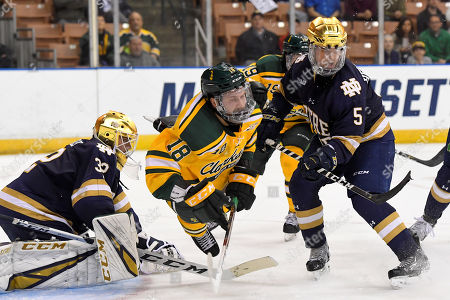Clarkson Golden Knights forward Haralds Egle (18) loses his footing between Notre Dame Fighting Irish goaltender Cale Morris (32) and defenseman Matt Hellickson (5) during the NCAA Northeast Regional ice hockey tournament game between the Clarkson Golden Knights and the Notre Dame Fighting Irish held at the SNHU Arena in Manchester NH. Notre Dame defeats Clarkson 3-2 in overtime