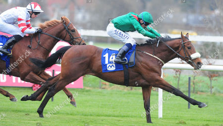LEAOPARDSTOWN TINANDALI and Chris Hayes win the Mercury Engineering Maiden from Grandmaster Flash. Healy Racing
