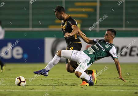 Christian Rivera (R) of Deportivo Cali in action against Luis de la Cruz (C) of Guarani during the Copa Sudamericana soccer match between Deportivo Cali and Guarani at Deportivo Cali Stadium in Cali, Colombia, 04 April 2019.