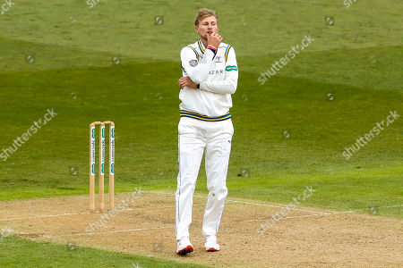 Joe Root of Yorkshire cuts a frustrated figure