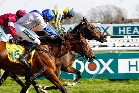 If The Cap Fits and Sean Bowen [yellow] survives a bad mistake at the last hurdle to win the Ryanair Stayers Hurdle at Aintree from Roksana [pink colours] and Apple's Jade [red colours].