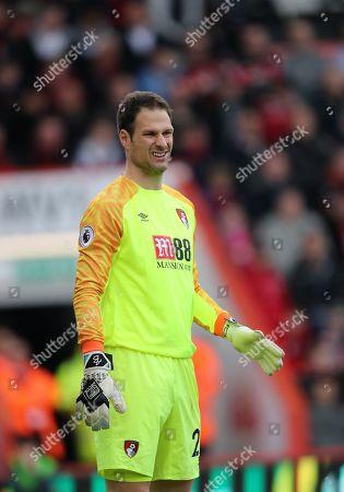Goalkeeper Asmir Begovic of Bournemouth.