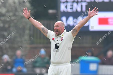 Wicket - Darren Stevens of Kent celebrates taking the wicket of Marcus Trescothick of Somerset during the Specsavers County Champ Div 1 match between Somerset County Cricket Club and Kent County Cricket Club at the Cooper Associates County Ground, Taunton