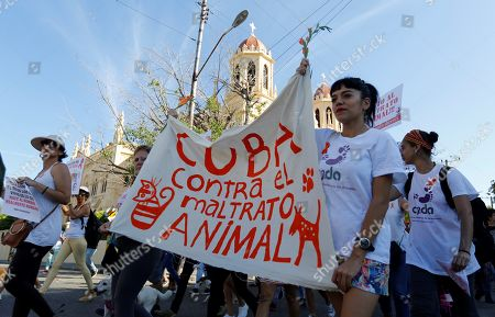 Hundred of people participate in a march against animal abuse that ended at the tomb of US animal rights activist Jeannette Ryder (1866-1931) in Havana, Cuba, on 07 April 2019. Cubans marched to demand the end of animal abuse and the approval of a law on the subject, on a pilgrimage allowed by the authorities of the island, where independent public demonstrations are not common.