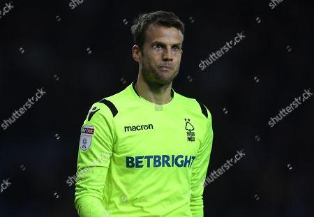 Stock Photo of Luke Steele goalkeeper of Nottingham Forest