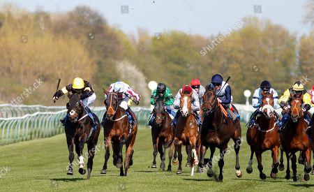 Horse Racing 10 Apr 2019 Stock Photos (Exclusive) | Shutterstock