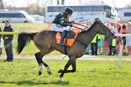 Stock Picture of MOLLY THE DOLLY (4) ridden by Harry Skelton and trained by Dan Skelton winning The Class 2 J & D Pierce Novices Champion Handicap Steeplechase over 3m (£100,000) during the Scottish Grand National race day at Ayr Racecourse, Ayr