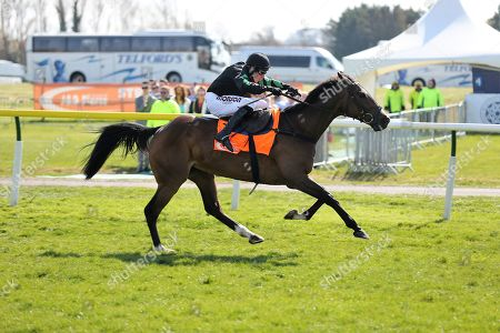 MOLLY THE DOLLY (4) ridden by Harry Skelton and trained by Dan Skelton winning The Class 2 J & D Pierce Novices Champion Handicap Steeplechase over 3m (£100,000)during the Scottish Grand National race day at Ayr Racecourse, Ayr