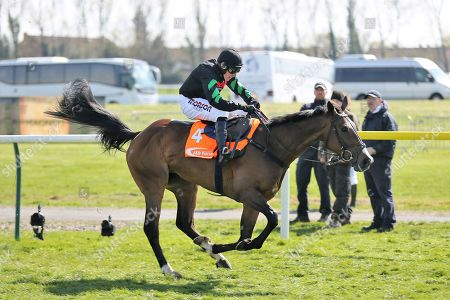 MOLLY THE DOLLY (4) ridden by Harry Skelton and trained by Dan Skelton winning The Class 2 J & D Pierce Novices Champion Handicap Steeplechase over 3m (£100,000) during the Scottish Grand National race day at Ayr Racecourse, Ayr