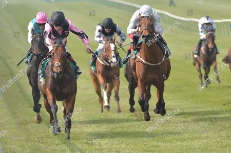 (L) Top Breeze (Tom Queally) wins The bet365 Handicap Stakes.