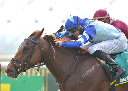 (L) Skardu (James Doyle) wins The bet365 Craven Stakes from (R) Momkin (Maxime Guyon).
