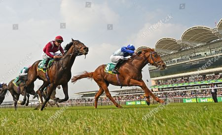 (R) Skardu (James Doyle) wins The bet365 Craven Stakes from (L) Momkin (Maxime Guyon).