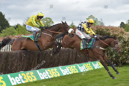 Stock Image of (R) Talkischeap (Wayne Hutchinson) takes the last before going on to win The bet365 Gold Cup Handicap Steeple Chase from The Young Master (Sam Waley-Cohen)..