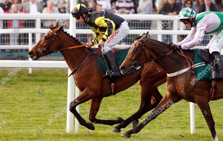 MYSTIC DREAMER (Leighton Aspell) wins The Spreadex Sports Betting Mares Standard Open National Hunt Flat Race Cheltenham