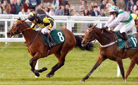 Stock Photo of MYSTIC DREAMER (Leighton Aspell) beats FLORESSA (right) in The Spreadex Sports Betting Mares Standard Open National Hunt Flat Race Cheltenham