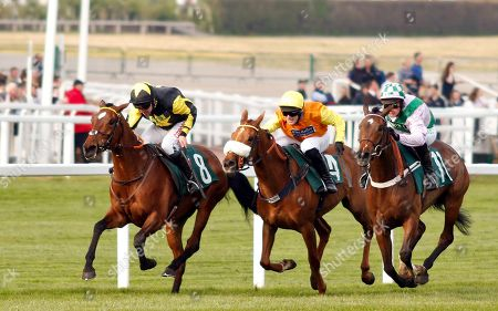 Stock Picture of MYSTIC DREAMER (Leighton Aspell) beats FLORESSA (right) and YEAVERING BELLE (centre) in The Spreadex Sports Betting Mares Standard Open National Hunt Flat Race Cheltenham