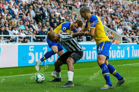 Editorial picture of Newcastle United v Southampton, Premier League - 20 Apr 2019