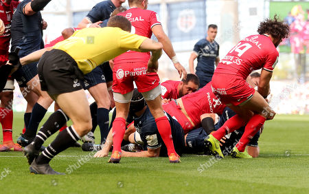 Leinster vs Toulouse. Leinster's Luke McGrath scores a try