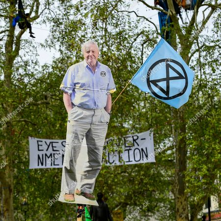 An image of broadcaster David Attenborough is held aloft as activists gather at Parliament Square during 'London: International Rebellion', on day nine of a protest organised by Extinction Rebellion.