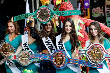 Stock Photo of A model (C) shows the Mayan Belt of the World Boxing Council during a press conference in Mexico City, Mexico, 23 April 2019. A priceless belt designed with jade stone, bathed in 14 carat gold and precious stones, donated by the World Boxing Council (WBC), will be the other title that will be disputed between the Mexican Saul 'Canelo' Alvarez and Daniel Jacobs of the US on 04 May in Las Vegas, USA. The belt will be the extra prize for the winner of the bout in which Alvarez will expose the WBC middleweight titles and the World Boxing Association (WBA) and Jacobs will risk the belt of the International Boxing Federation (IBF).