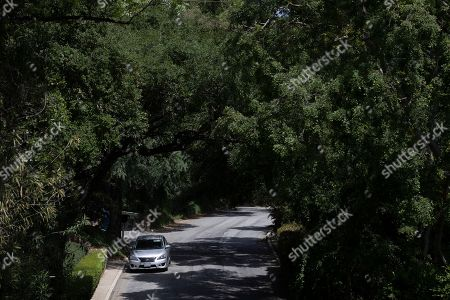Stock Picture of A car is parked on a street shaded by tall trees in the Chevy Chase Canyon neighborhood of Glendale, Calif. The city of Glendale straddles the Verdugo Mountains with neighborhoods, schools, and hiking trails carved into its base. The city's 2008 emergency plan identified them as potential brush fire zones