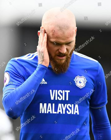 Aron Gunnarsson of Cardiff City