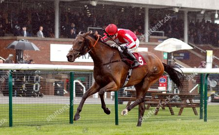 MORDIN (Pat Cosgrave) wins The Betway Edge Green Handicap Haydock
