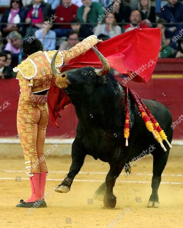 Spanish bullfighter Alberto Lopez Simon fights with his first bull during the 2nd bullfighting of the Minifair of San Jorge held at La Misericordia bullring in Zaragoza, northern Spain, 27 April 2019.