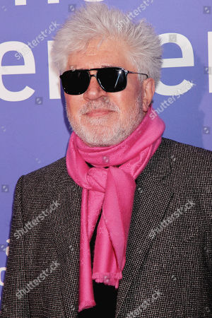 Stock Photo of Pedro Almodovar