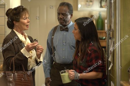 Celia Imrie as Phyllis, Harrison Page as Walter and Pamela Adlon as Sam Fox