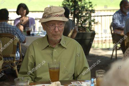 Bernie Kopell as Irwin