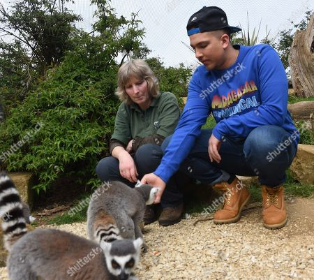 X Factor winner Matt Terry who stars as Alex the Lion in 'Madagascar The Musical' at the Cotswold Wildlife Park.