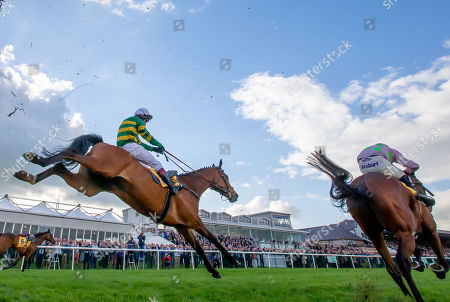Stock Picture of Richard Johnson in second place on Defi Du Seuil trails eventual winner Robbie Power on Chacun Pour Soi in The Ryanair Novice Steeplechase