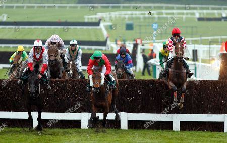 Stock Image of SOUTHFIELD THEATRE (right, Lily Bradstock) on his way to winning The Are You Well, I Thought You Were Open Hunters Chase Cheltenham