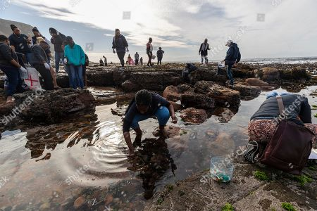 Stock Photo of South African students pick up plastic waste and debris during a beach cleanup of the inter-tidal zone of Dalebrook tidal pool in Kalk Bay, Cape Town, South Africa, 04 May 2019. The cleanup was organized by Oceano Reddentes, a South African Non-Profit Organization teaching ocean users to collect plastic to make Ecobricks which are then used to build homes for the homeless. Plastic pollution has reached an epidemic proportion. According to an Ellen MacArthur Foundation report, there will be more plastic in the ocean than fish by 2050. Africa is one of the most affected continents due to its extensive coastline and underdeveloped waste systems allowing plastic waste to easily enter the ocean. The rapid growth of plastic production in the three biggest areas the European Union, China and the US particularly in single-use plastics is recognized as one of the greatest risks facing the environment and mankind. Efforts at recycling and plastic waste education are on the rise on the African continent with many programs being initiated by youth groups who view the problem as the biggest environmental challenge facing the new generation.