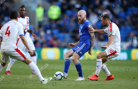 Aron Gunnarsson of Cardiff City is challenged by James McArthur of Crystal Palace.