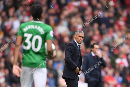 Brighton & Hove Albion Manager Chris Hughton looks towards Bernardo of Brighton & Hove Albion