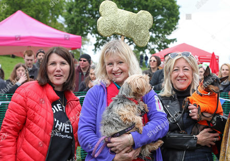 Judge Liza Goddard with her Yorkshire Terrier, Violet, with radio presenter Anna Webb and her dog Mr Binks and Ira Moss of ADM at the All Dogs Matter Bark Off charity dog show, Hampstead Heath, London, England. Cute dogs took part in several categories of this annual dog show which is run by the charity which houses and rehomes dogs in London and finds homes for dogs from overseas. Dogs competed to be cutest pup, best rescue and more. More information at www.alldogsmatter.co.uk