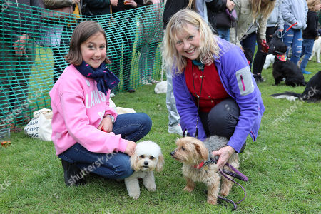 Judge Liza Goddard with her Yorkshire Terrier, Violet, with contestant Poppy the Cavashon and owner Leila at the All Dogs Matter Bark Off charity dog show, Hampstead Heath, London, England. Cute dogs took part in several categories of this annual dog show which is run by the charity which houses and rehomes dogs in London and finds homes for dogs from overseas. Dogs competed to be cutest pup, best rescue and more. More information at www.alldogsmatter.co.uk