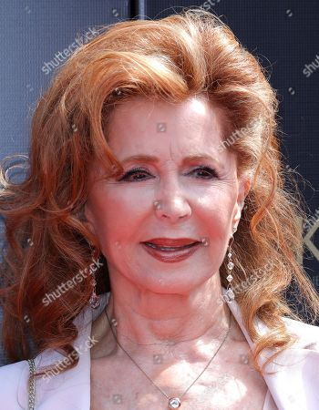 Stock Picture of Suzanne Rogers