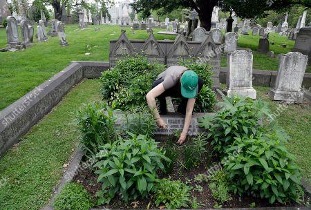 Stock Picture of Volunteer Jennifer Walker clears an area as she plants on the Keen family plot at the Woodlands Cemetery in Philadelphia
