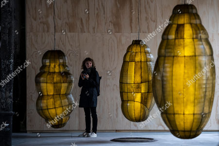Stock Image of A visitor next to an installation by Anicka Yi of South Korea at the 58th International Art Exhibition of the Biennale in Venice, Italy, 08 May 2019. The art event runs from 11 May to 24 November 2019.