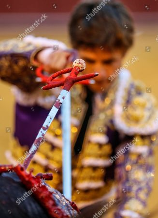 Spanish bullfighter Julian Lopez 'El Julio' fights his second bull during an April's Fair bullfight at Real Maestranza bullring in Seville, Andalusia, Spain, 08 May 2019.