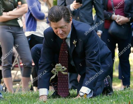 State Sen. Brian Jones, R-Santee, coaxes his frog, Mr. Jeremy Fisher, to jump during the annual Capitol Frog Jump, in Sacramento, Calif. Jones, who won last year's contest failed to repeat as champion. The contest is held in advance of the Calaveras County Fair and Jumping Frog Jubilee which runs May 16-19 in Angels Camp