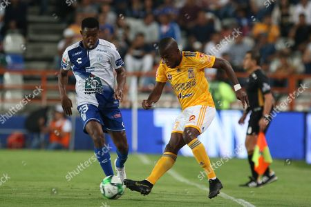 Stock Picture of Oscar Murillo (L) of Pachuca in action against Enner Valencia (R) of Tigres UANL during the Clausura Tournament 2019 first leg quarter final soccer match between the Pachuca and Tigres UANL, at the Hidalgo Stadium in Pachuca, Mexico, 08 May 2019.