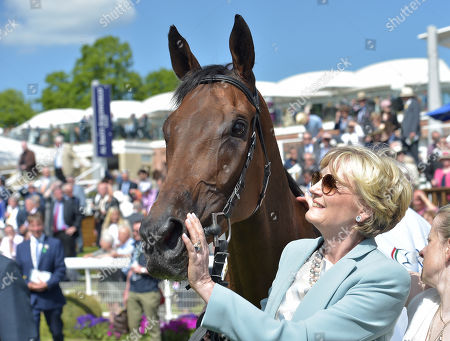 Editorial image of Horse Racing, Newbury Racecourse, UK - 16 May 2019