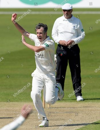 Wicket for Graham Onions