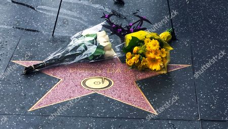 Flowers adorn the star of Doris Day on the Hollywood Walk of Fame in Los Angeles, . Doris Day, the sunny blond actress and singer whose frothy comedic roles opposite the likes of Rock Hudson made her one of Hollywood's biggest stars in the 1950s and '60s and a symbol of wholesome American womanhood, died earlier Monday at her home in the Carmel Valley in Northern California. She was 97